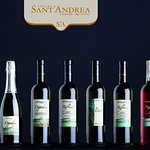 Cantina Sant'Andrea Azienda Agricola의 사진