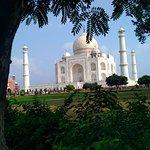 It is beautiful view of Taj mahal from garden