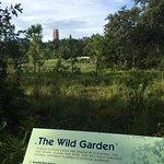 Billede af Bok Tower Gardens