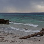 Foto de Penisola del Sinis - Isola di Mal di Ventre
