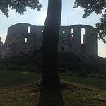 Foto de Janowiec Castle