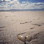 Billede af Inch Beach