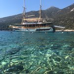 Foto di Sea Bella -Tours