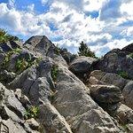 Mary's Rock Summit Trail의 사진