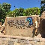 Photo of Adventure Cove Waterpark