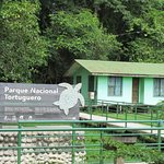 Foto Tortuguero National Park