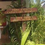 Billede af Budda Cafe