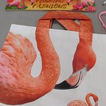 The Official Florida Flamingo Museum照片