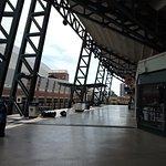 inside view of ballpark