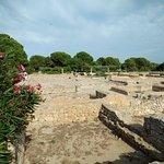 Photo of Ruins of Empuries
