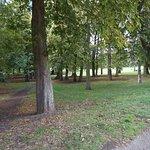 Billede af Christchurch Park