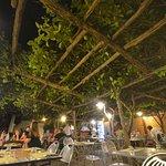 Lemon tree ceiling