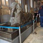 صورة فوتوغرافية لـ متحف الآثار المصرية