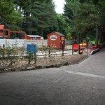 Foto van Happy Mount Park