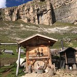 Foto Malga Sasso Piatto