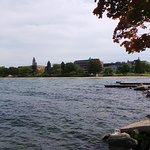 Foto Clinch Park