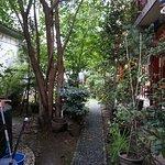 De prachtige binnentuin