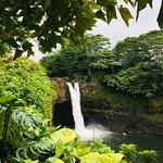 Foto de Rainbow Falls