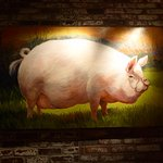 Yellow sow