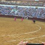 Foto de Plaza de toros de La Malagueta