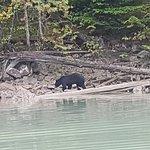 River Safari照片