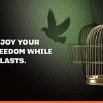 Enjoy your freedom while it lasts.