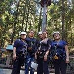 Фотография Sonoma Canopy Tours