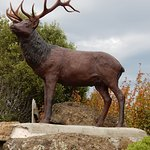 Statue of Stag