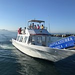 Laser Capri Boat Tours Photo