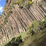 Bilde fra Organ Pipes National Park