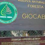 Photo of Foresta Umbra