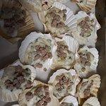Lo Scacciapensieri - Osteria di mare