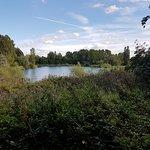 Lake view3