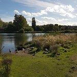 Lake view4