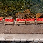 Peppers for the restaurant drying on the harbour wall - shot from our room