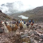 Photo of Chacras Travel Peru