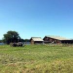 Вид с дороги на экспозиционный дом зажиточного островитянина