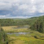 Φωτογραφία: Beaver Pond Trail