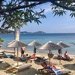 Bild från Swell Beach Bar