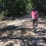 Branches and wood chips - tough riding