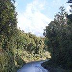 Foto de Mount Taranaki