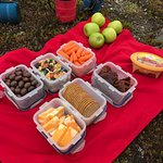 Picnic lunch and hot tea/coffee.