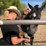 wife feeding apples to horses ( bring apples with you)