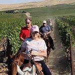 riding through the vineyard
