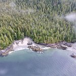 Photo of Atleo River Air Service- Day Tours