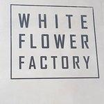 ภาพถ่ายของ ครัวดอกไม้ขาว - สยามสแควร์วัน