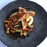 Kurczak Zagrodowy - Drukarnia