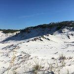 Foto St. Joseph Peninsula State Park