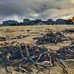 Galley Beach照片