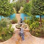 ANIMA Garden Foto